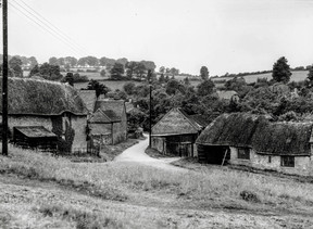 Frog lane and Peartree cottage from Upper Green