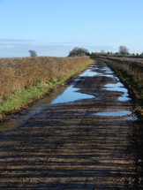 Winter on Pig Lane 2