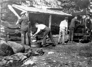 Maybe cider pressing 1900s
