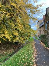 Autumn- Middle Street