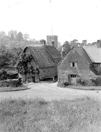 Clifford's Orchard in Ilmington. 1948