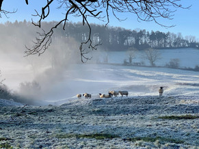Ilmington in Winter 2