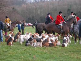The last legal fox hunt in Ilmington, 22nd January 2005 - 2