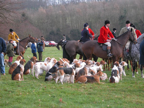 The last legal fox hunt in Ilmington, 22nd January 2005 - 2