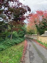October - Valenders Lane