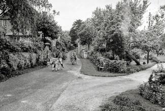 Frog lane 1960s