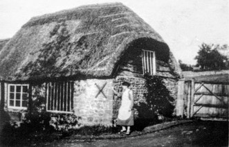 In the drive Peartree cottage with thatch