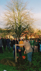 Millennium tree planting 2000 A.  Brian Meredith and Parish Council Chairman Tony Wilkins giving a how to plant a tree demonstration to the group who are about to go off and do it.