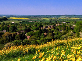 View from Foxcote Hill with buttercups