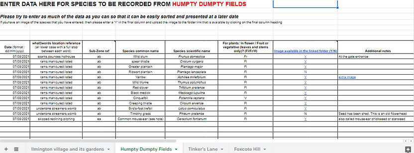 humpty dumpty data recording sheet.jpg