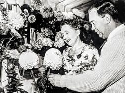 Ted Freeman & Helga Harris' flower show exhibits