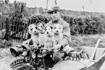 Fred Dumbleton with rabbits & side car