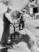Sheep shearing at Ilmington 1920s. On the left: Johnny Hemmings