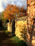 Late Autumn - Valenders Lane