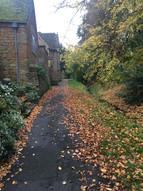Autumn - Middle street