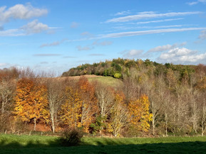 Top of Foxcote Hill mid November