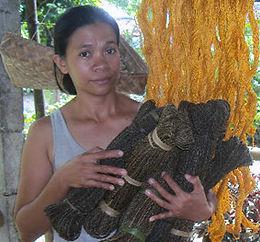 Ruth Sanchez Manes2.jpg