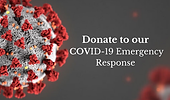 COVID-19 Button .png