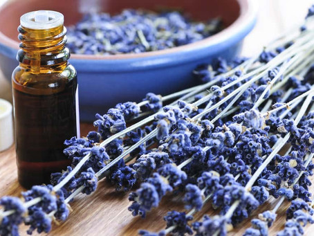 The 5 Best Essential Oils for Anxiety