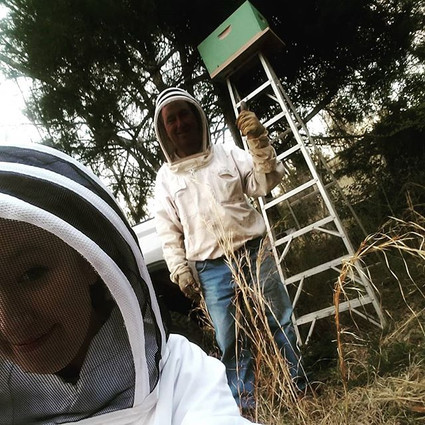 🐝Another Successful Swarm Removal🐝 #ho