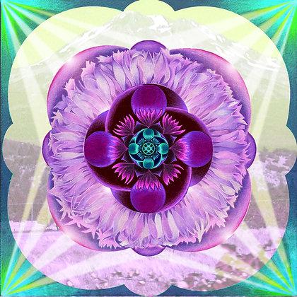 "Healing from Mt. Shasta  (16""x16"")"