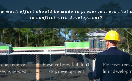 Should we preserve trees that conflict with development?