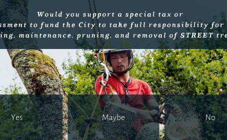 Would you support a special tax so the City can fully fund and manage trees?