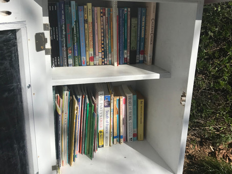 Buena Vista Little Free Library Makeover