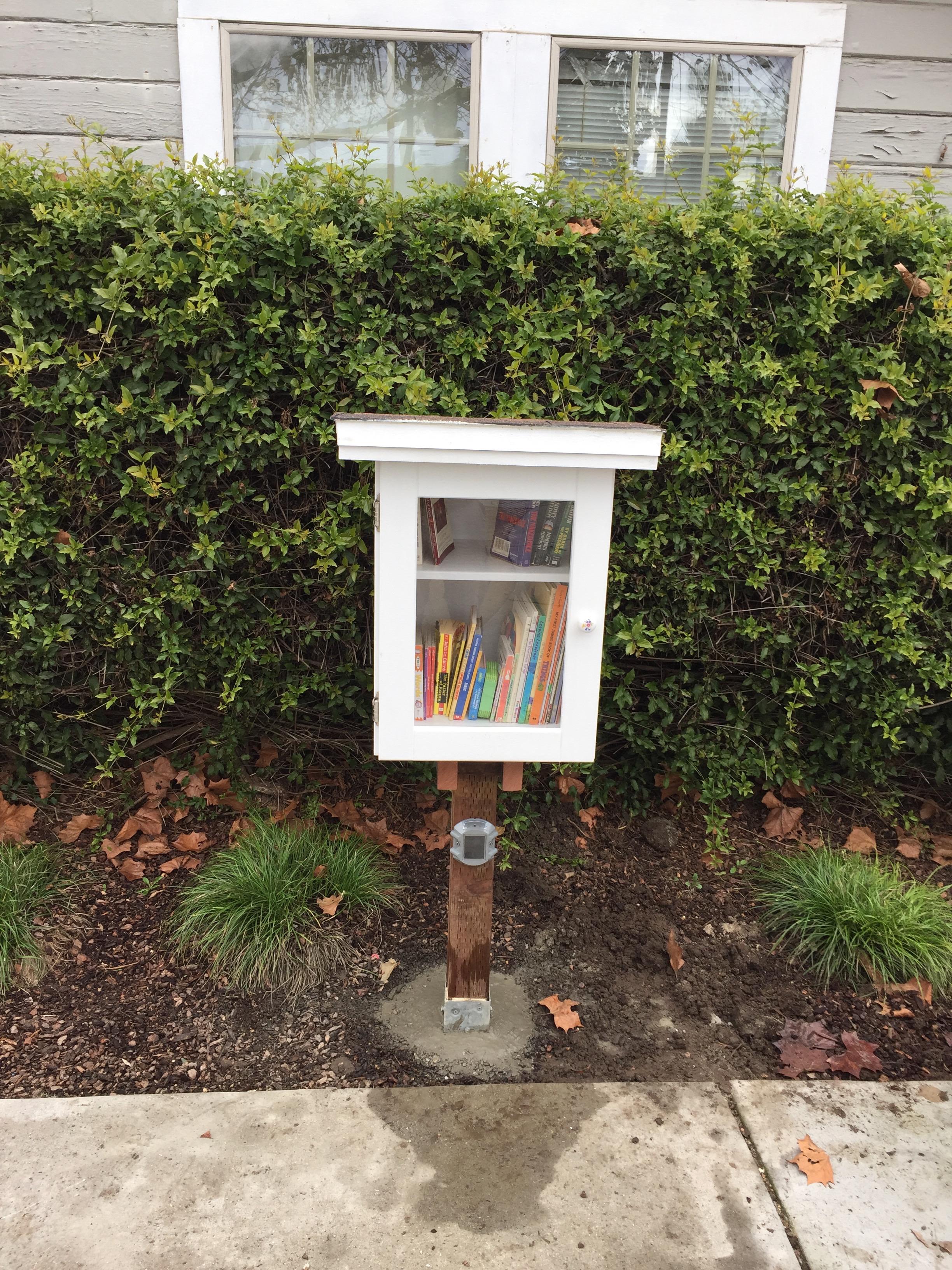 Buena Vista Park Little Free Library