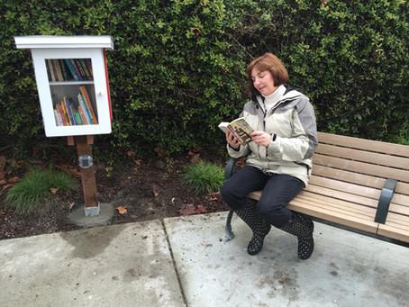 Buena Vista Parks Little Free Library