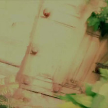 Brugmancia teaser Master V.10.m4v