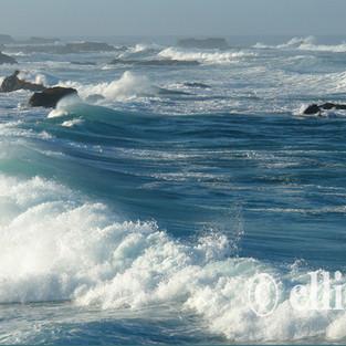 Morning Waves1