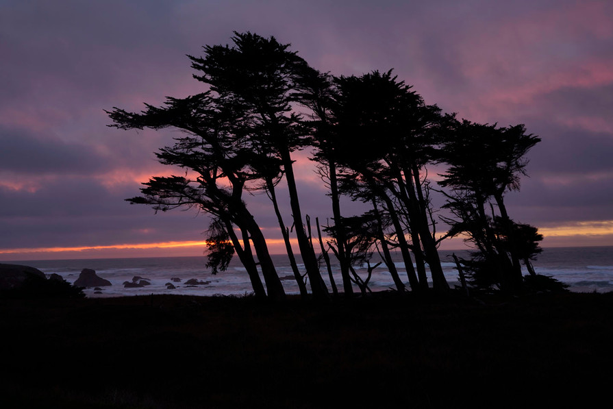 beachcomber sunset 7056