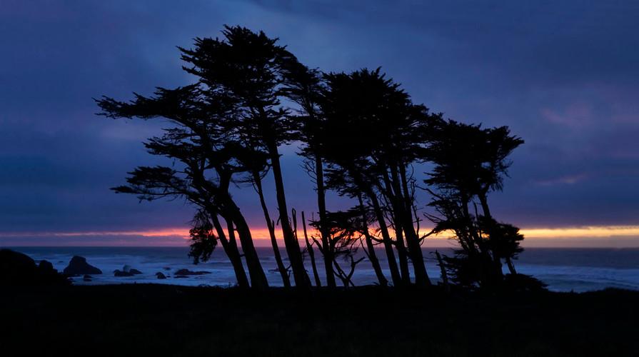 beachcomber sunset 7061