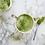 Thumbnail: Collagen & Probiotic Matcha Latte Blend