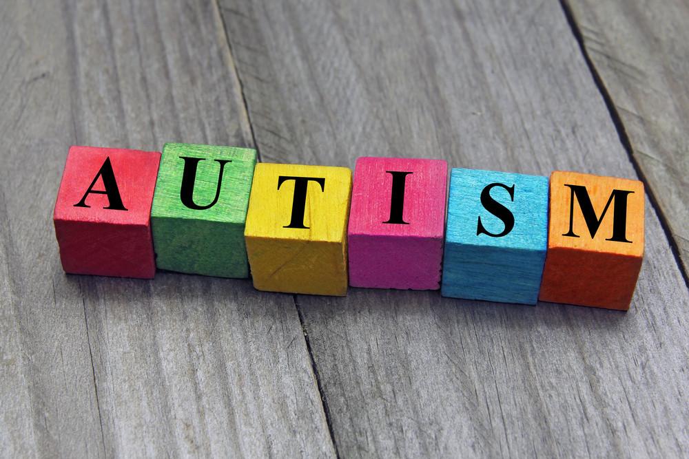 Bricks spelling autism