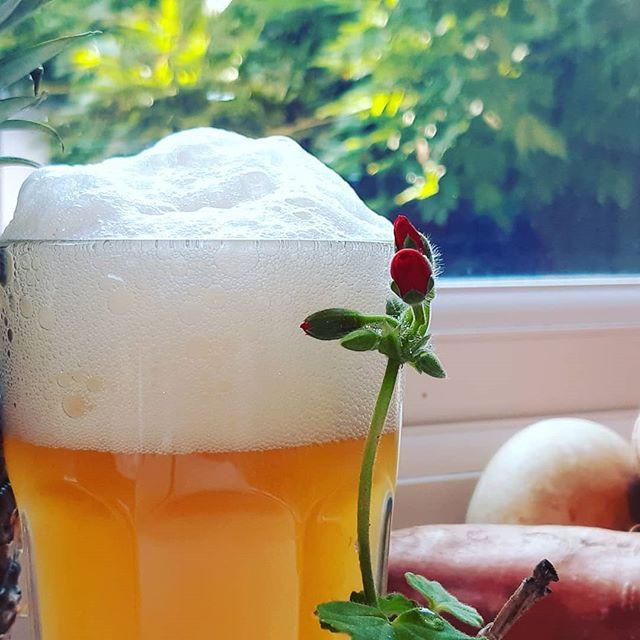 Kombucha is a fermented beverage