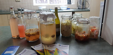 A selection of verious fermented foods and driks20191020_145409.jpg