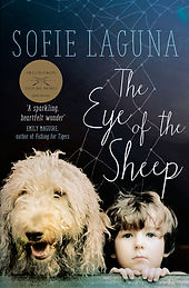 eye of the sheep.jpg