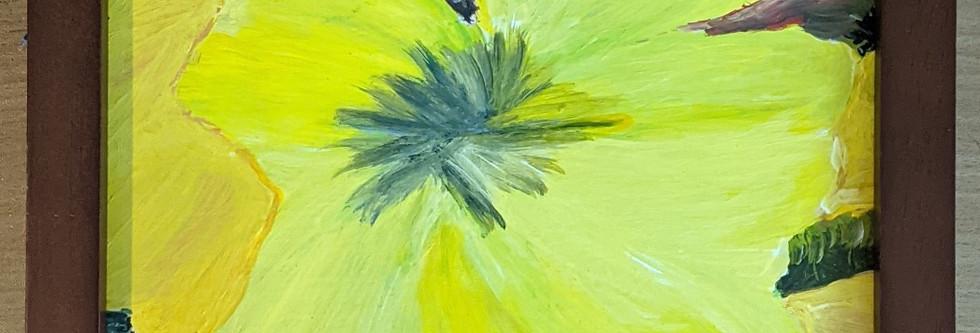 Open Tulip by Emma Becker