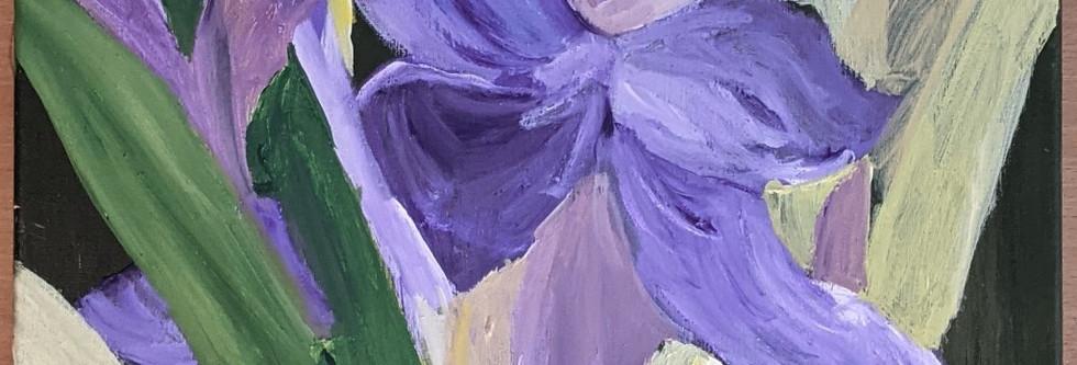 Iris by Emma Becker