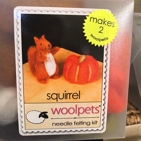 Wool pets needle felting kit