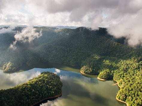 Parque Estadual do Jurupará