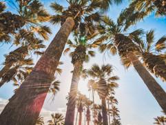 beautiful-tropical-resort-concept-park-w