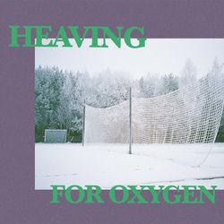 'Ludvig Moon' - 'Heaving For Oxygen' (single)