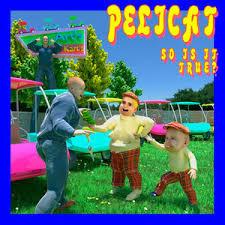 'Pelicat' - 'So is it true?' (single)