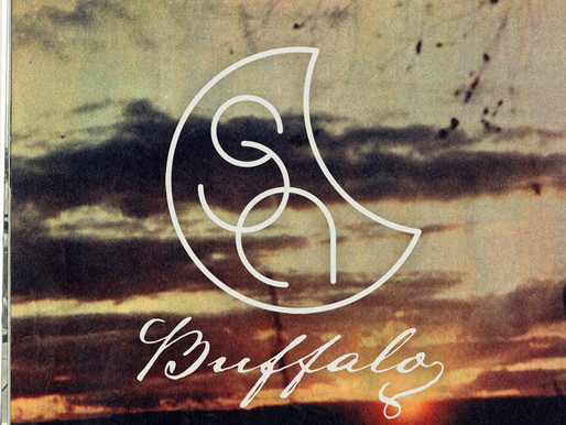 Introducing... 'Salainen avaruusohjelma' with track 'Buffalo'