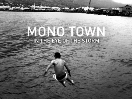 NMR Featured artist: Mono Town