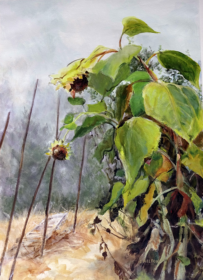 Sunflower in the Fog
