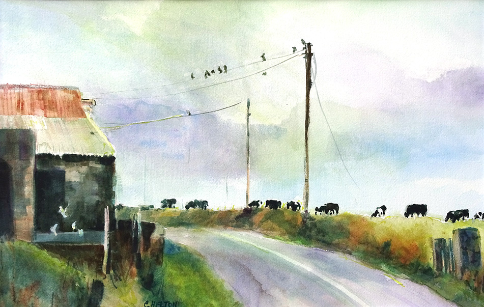 cows, birds, and a path